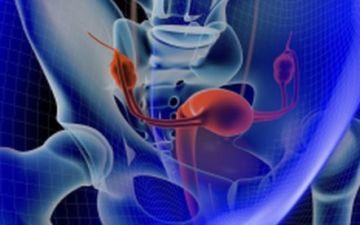 Можно ли определить наличие рака матки на УЗИ?