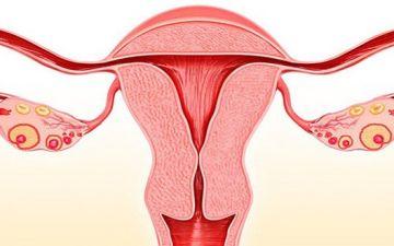 Симптоматика и основные признаки эрозии шейки матки