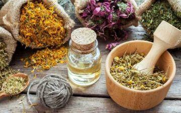 Лечение полипов в матке народными средствами: рецепты, противопоказания