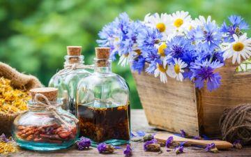 Лечение миомы народными средствами — рецепты, которые помогли