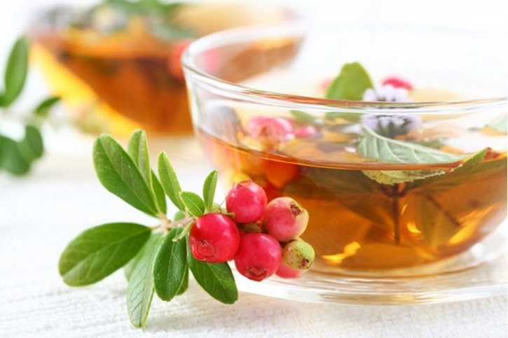 Чай из мяты и рябины при миоме