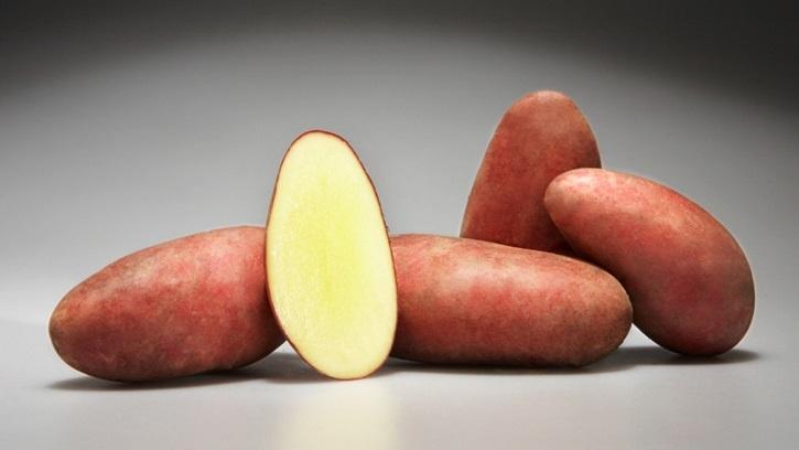 Лечение картофелем миомы