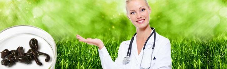 Гирудотерапия как альтернатива лечения миомы