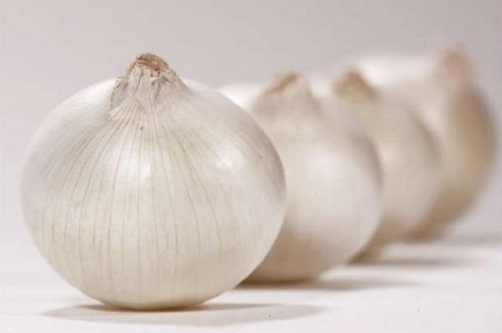 Лечение белым луком