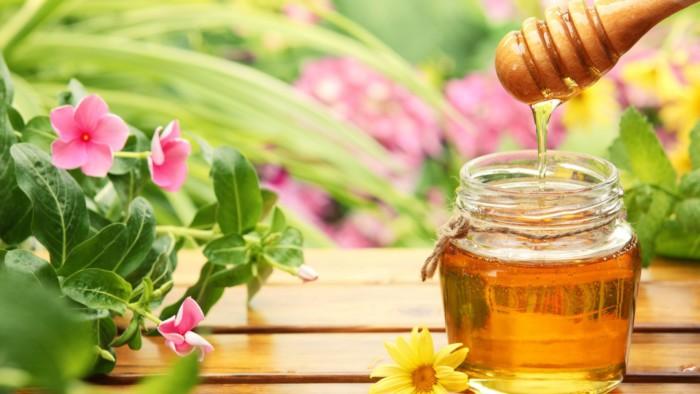 Лечение кисты яичников мёдом