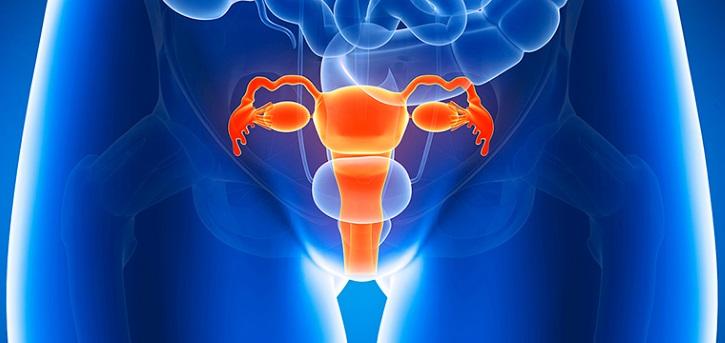 Травмы матки приводят к лейомиоме