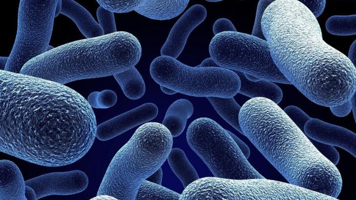 Бактерии разрушают микрофлору шейки матки