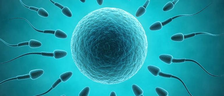 Какие бывают боли при эндометриозе и как их снимать