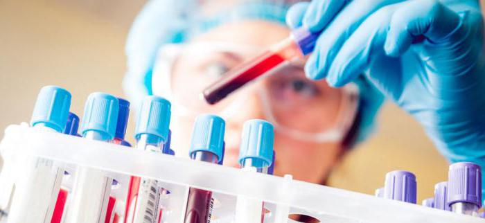 Анализ крови натощак