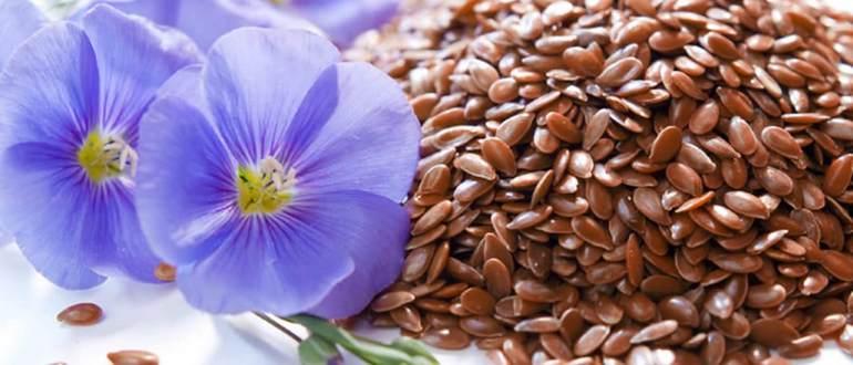 семена льна при эндометриозе